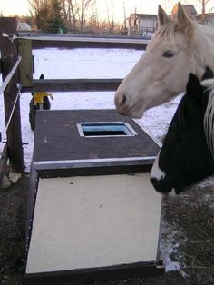 How to construct an insulated and solar heated horse watering tank for cold climates Horse Feeder, Horse Water, Water Trough, Future Farms, Tallit, Dream Barn, Horse Stalls, Barn Plans, Diy Solar