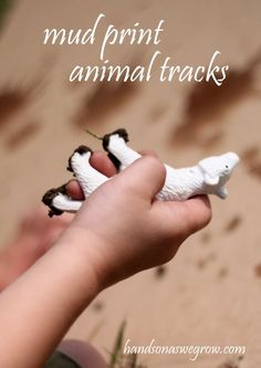 Mud Prints: Animals tracks, Feet and Handprints - do you let your kids play in the mud?