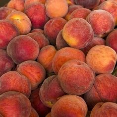 Love this time of year...peaches yummo!!