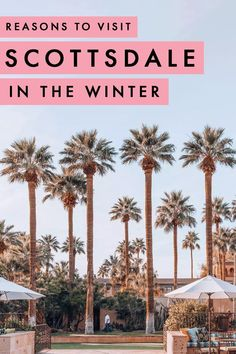 Planning a weekend getaway in March but wondering where to go? Here are all the reasons Scottsdale in Arizona is the perfect getaway in the United States, regardless of whether you're looking for a romantic staycation or a fun girls' weekend getaway! Usa Travel Guide, Travel Usa, Travel Guides, Travel Tips, Travel Info, Travel Goals, Budget Travel, Travel Articles, Travel Hacks