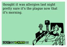 thought it was allergies last night pretty sure it's the plague now that it's morning.
