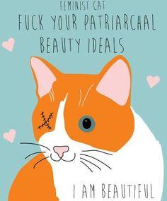 gato feminista
