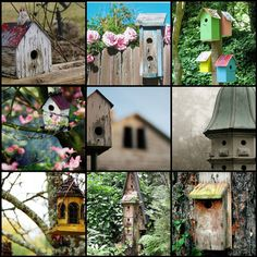 The pink and green with the bird houses is perfect.