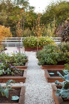 Garden beds that elevate your plants offer several benefits. Having them elevated separates your fertile soil from what's natively grown in the ground, allowing you a little more control over the nutrients your plants are receiving. And if you set them up to drain on the rocks, it prevents your roots from drowning, which is the number one reason most plants die.