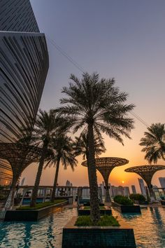 Twice now I've taken my kids around the world in 2-3 weeks, letting them choose all destinations and activities. This was on our most recent RTW trip - sunset at the Rosewood Abu Dhabi.