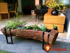 Tree Stump For Garden Art. you can use tree stumps in your garden as planters and they will give you a special charm that everyone will be admired. Woodworking Techniques, Woodworking Plans, Woodworking Projects, Woodworking Videos, Woodworking Workshop, Woodworking Furniture, Woodworking Machinery, Woodworking Beginner, Woodworking Jointer