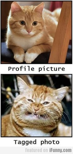 So true! haha! Tagged photos are usually unkind. :D
