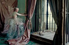 Atlas The Lion: a Film by Tim Walker for LOVE | Yellowtrace.