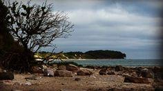 Wer wäre jetzt nicht auch gerne auf Fehmarn? #fehmarn #ostsee #balticsea #strand #beach #natur #naturfotografie #nature #naturephotography