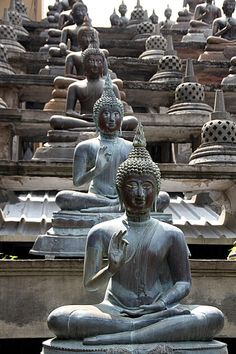Gangaramaya Temple in Colombo, Sri Lanka Voyage Sri Lanka, Laos, Le Sri Lanka, Places To Travel, Places To Visit, Templer, Buddhist Art, Buddhist Temple, Varanasi