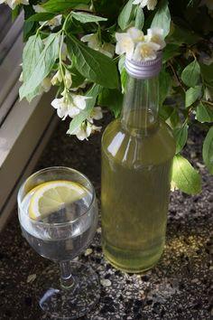CÁCORkA: Šalvějový sirup Glass Vase, Decor, Syrup, Decoration, Decorating, Deco