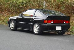 By a mountain path Mugen CRX Si  (nickname: Bara Supo / バラスポor 黒バラ君 )