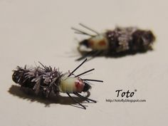 Cased Caddis by Toto®