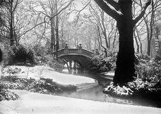 Le Parc Monceau sous la neige en 1917 les plus belles photos de paris sous la neige