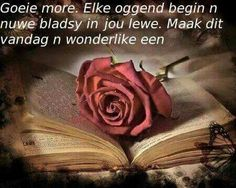 Goeie more Bible Quotes, Qoutes, Nights Lyrics, Lekker Dag, Afrikaanse Quotes, Goeie Nag, Goeie More, Good Morning Good Night, Begin