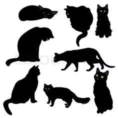 cat silhouettes free | Stock vector of 'Black cat silhouettes, vector illustration'