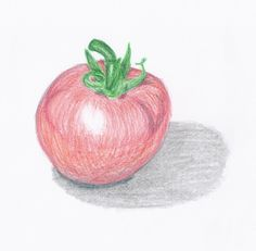 With the simple use of colour I found it really brings it to life. using the pencil in a circular motion gives the tomato a curved look.