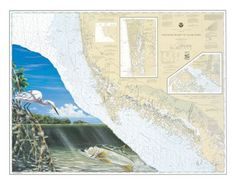 Steve Whitlock Nautical Chart Art - Everglades Snook