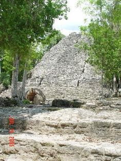 Book your tickets online for Coba Ruins, Coba: See 4,097 reviews, articles, and 3,627 photos of Coba Ruins, ranked No.1 on TripAdvisor among 7 attractions in Coba.
