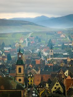 Riquewihr town from the surrounding hills in Alsace, France. Again, this place is so beautiful it's unrealistic! I hope the people that live in those very buildings know how luck they are!