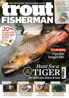 Sea Angling, Fishing Magazines, Types Of Fish, Carp Fishing, Trout, Latest Issue, Books, Libros, Brown Trout