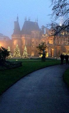 Christmas trees at Waddesdon Manor - Waddesdon, Buckinghamshire, England