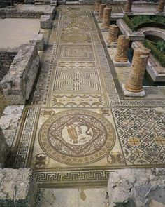 Conimbriga, Roman, Mosaics In the earlier first centaury - being Augusto the Caesar of the Roman Empire, Conímbriga was a very well developed city with beautiful houses, spas and a Forum. Conímbriga reappeared in the end of 19th centaury due to excavations made by archaeologists.
