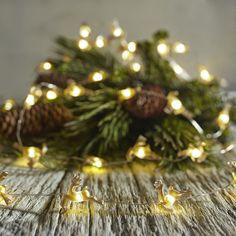 Gold Reindeer 10' LED Glimmer Strings® | Pier 1 Imports