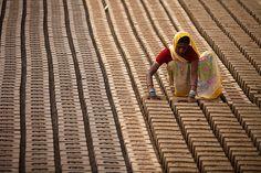 Mujer trabajando en una fábrica de ladrillos en las afueras de Jammu, India.