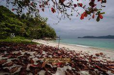Borneo: Kota Kinabalu and Brunei