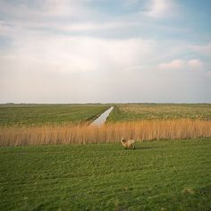 """Check out these photos by Netherlands-based photographer Valerio Vincenzo depicting the """"erased"""" border between the Schengen area nations European Economic Community, Schengen Area, European Countries, Landscape Photos, Denmark, Peace, Country, World"""