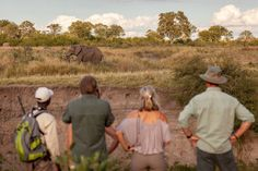 A walking safari is any wildlife enthusiasts dream as you wander through the bush by foot with a knowledgeable guide. The perfect opportunity to experience, observe and learn about the animals in their natural habitat. #explorer #explorersafari #safari #walkingsafari #africa #travel #wildlife #elephant #inthewild #adventure #africansafari #safariguide #walking #explore #travelbucketlist #bucketlist #travelinspo #wild #nature #africaoutdoors #big5 Private Safari, Wildlife Safari, Big 5, Wild Nature, African Safari, Africa Travel, Habitats, Wander, Opportunity