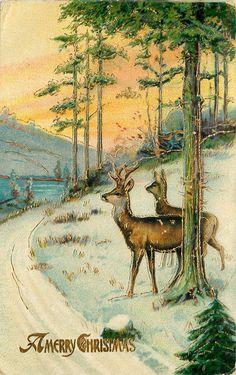 Beautiful Vintage Christmas Deer Post Card ~ Peach Sky