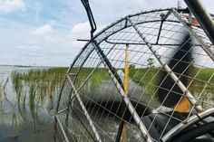 The Ultimate Mobile Bay Bucket List #26 check (x100!)