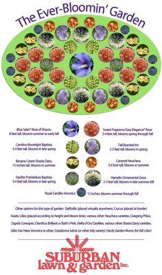 PerennialMap: perennial garden design plan for Kansas from Suburban Lawn & Garden