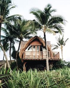 Bali, Indonesia beach hut surrounded by palm trees