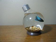 lightbulb fishtank