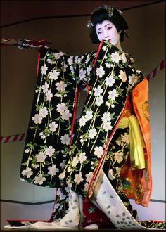 """Geisha's dance.  Japanese Geisha """"Geisha (芸者), geiko (芸子) or geigi (芸妓) are traditional Japanese female entertainers who act as hostesses and whose skills include performing various Japanese arts such as classical music, dance and games."""""""
