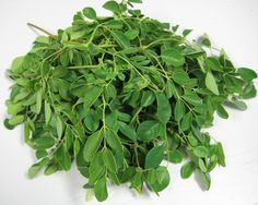 Moringa Seed, Leaf, Powder - The Benefits of Moringa Extract to Skin care and Beauty