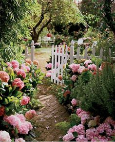 So pretty this garden entrance