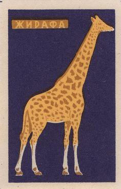 Vintage matchbox label with giraffe Vintage Labels, Vintage Posters, Vintage Art, Giraffe Art, Matchbox Art, Illustrations Posters, Design Illustrations, Oeuvre D'art, Graphic Art