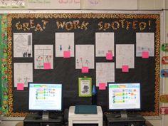 Jungle Themed Classroom ideas