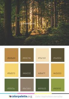 Forest Woodland Nature Color Palette #colors #inspiration #graphics #design #inspiration #beautiful #colorpalette #palettes #idea #color #colorful #colorscheme #colorinspiration #colorcombinations #colorcombos #colorpalette_org