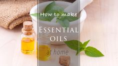 Recipes from different blends to create your ultimate skin feeding oil at home