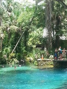 Juniper Springs a Florida Favorite