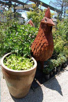 Ogling over Gualala Nursery - Far Out Flora Biggest Chicken, Found Object Art, Flower Pictures, Yard Art, Easter Crafts, Garden Sculpture, Flora, Succulents, Sculptures