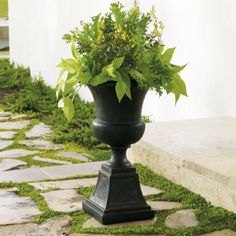 Genevieve Urn in Charcoal