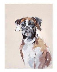 Boxer Dog on Canvas