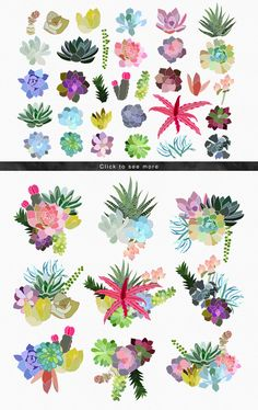 Illustrations Product Images ~ Succulent Paradi… ~ Creative Market