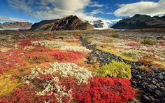 Исландия ~ Le status
